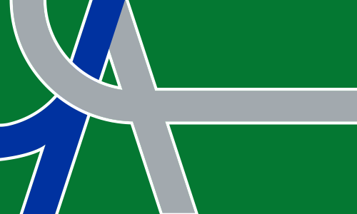 official-albany-flag